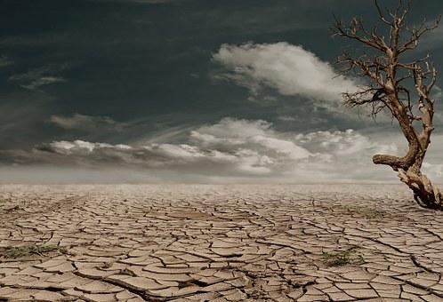 desert-279862__340